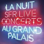 Nuit Electro 2011 – Nacht der elektronischen Musik – Grand Palais